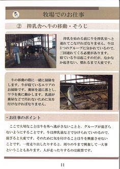 11ページ:牧場のお仕事③