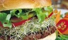 SPICY BEEF BURGER: Give meal time some spice with these mouth watering burgers. #Burgers