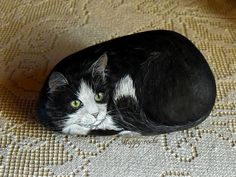 PIPPO by rockpainting , yvette, via Flickr