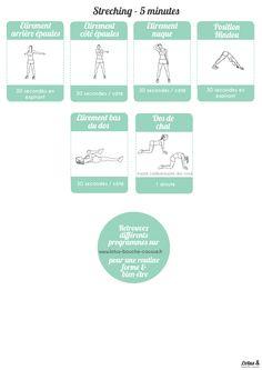Circuit ciblé pour un dos musclé à faire à la maison, à télécharger gratuitement ici. Il renforce cette partie du corps et évite les maux de dos récurrents.
