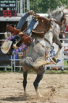 Cowboy Photography, Animal Photography, Cowboy Up, Cowboy And Cowgirl, Western Riding, Horse Riding, Rodeo Rider, Rodeo Events, Horse Pictures