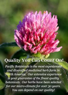 Pacific Botanicals - Growers & Suppliers of High Quality Certified Organically Grown Herbs & Spices
