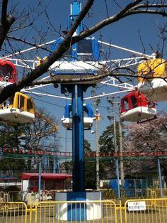 伊勢崎市華蔵寺公園遊園地は入園料無料のテーマパーク。園内には大観覧車「ひまわり」やジェットコースターをはじめ、13種類のアトラクションがそろっています。乗り物はいずれも70~350円で利用可能。豆汽車やヘリタワーといった0歳から楽しめる遊具もあります。お花見スポットとしても有名で、時期になるとサクラやツツジ、シャクナゲ、花ショウブといった花々が咲き乱れます。