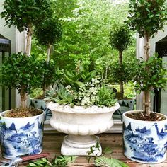 Laurel, Why Does My Decorating Look So Awful? - laurel home - exquisite stylings, gardens, florals and home furnishings of Maura Endres