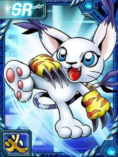 Gatomon/Tailmon Digimon Collectors card (RE card) Gatomon, Digimon Adventure 02, Digimon Tamers, Fox Kids, Final Fantasy Ix, Collector Cards, I Love Anime, Chibi, Pokemon