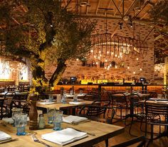 seafood restaurant garden. To enhance the indoor/outdoor atmosphere even further, six 100-year-old olive trees were brought inside, allowing guests to dine in an indoor garden.