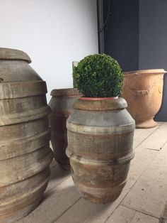 New arrivals for the garden at Anton & K