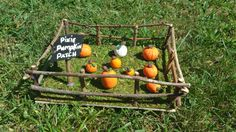 Adorable little handmade pumpkin patch to add to your fairy garden! Garden is 8 long, 6 wide and 3.5 tall.