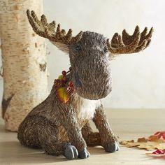 Natural Sitting Moose