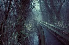 Reminds me of the setting around the Rustic Fog, in Troll Or Derby.