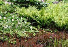 Elisabeth C. Miller Botanical Garden: