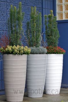 Bir Planter contemporary outdoor planters.  I like the style of planter and the variety of plants used.