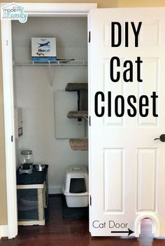 """This is a sponsored post written by me on behalf of Healthy Pet. All opinions are mine."""" I told my husband years ago. His answer was always no. He didn't like cats and never wanted one in the house. I, on the other hand, grew up Animal Room, Converted Closet, Cat Hacks, Cat Diys, Gatos Cats, Cat Room, Healthy Pets, Cat Furniture, Diy Stuffed Animals"""