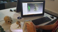 Interaktywne Muzeum Czaszki 3D 02 Studio, Studios