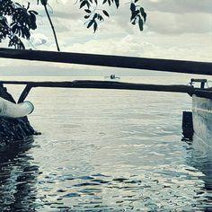 Maluku, Morella