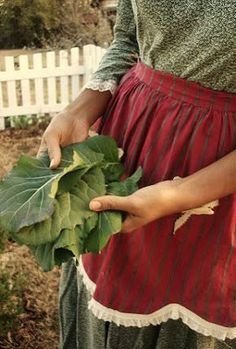 aprons and cabbage leaves