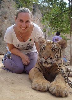 To visit the tiger temple in kanchanaburi Thailand
