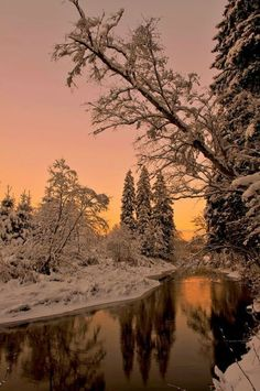 Winter landscape at dusk Winter Szenen, Winter Sunset, Winter Love, Winter Wonder, Winter Landscape, Landscape Art, Landscape Paintings, Snow Photography, Landscape Photography