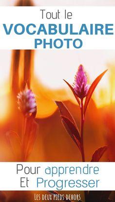 Si vous débutez en photographie ou que vous souhaitez progresser, il vous faudra apprendre et connaitre le vocabulaire en photographie. Je vous propose une liste de A à Z de tous les termes à connaitre dans le domaine. Le guide parfait pour débuter. #photo #photographie vocabulaire photo | vocabulaire photographie | conseils photo | apprendre la photographie | débuter en photographie | débuter en photographie