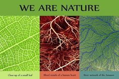 We are nature