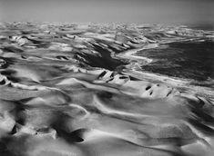 Mesmerizing Black & White Wildlife Photography by Sebastião Salgado