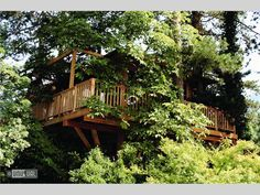 Meisters Hotel Irma    Merano, Italy     Treehouse suite in luxury hotel