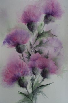 Kathryn Wickson - Thistles - Artists & Illustrators - Original art for sale direct from the artist