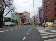 Long view of Fabric Street.  Streets lined with cherry blossom trees.