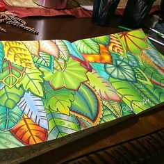 By @ollyloveart 🔝🍃🍁🍂🌿🌾🌱 Bommmm diaaaa!!!! Gente eu ameiiiiiiii esse colorido, não só pela beleza em si mas principalmente pq me deu muitas idéias para colorir as folhas... Eu acabo fazendo muitos tons de verde e pouco me aventuro em fazer folhas em outras cores. Eu realmente amei e vou colocar em prática nos meus coloridos, e fazer as folhas em diferentes cores 😉😍 E vcs? Como colorem as folhas?  #colorindomeujardimencantado #mycreativeescape #mandala #milliemarotta #johannabasford…