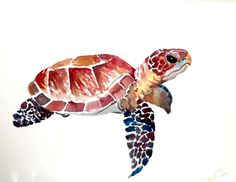 Sea Turtle. original watercolor painting 12 X 9 in by ORIGINALONLY, $28.00