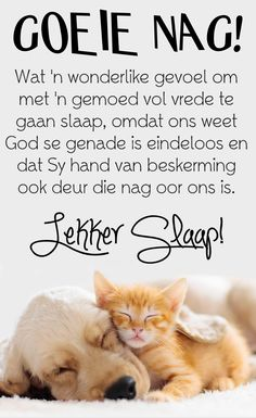 Afrikaanse Quotes, Good Night Blessings, Goeie Nag, Sleep Tight, Day Wishes, Poems, Faith, Messages, Good Evening Wishes