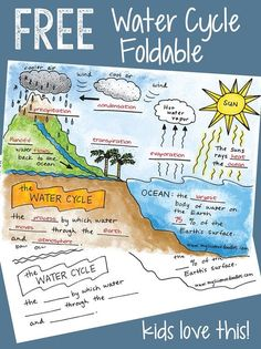FREE Water Cycle Printable