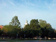 Elmwood, BuffaloState, Rockwell Hall