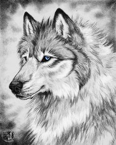 Meh, looks better as a thumbnail... Anyway, this was an attempt at a graphite illustration of my fursona, Fallon (WhiteFire). --->Fallon TEMP REF It's alright but I can tell I lost my pati...