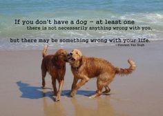 Van Gogh Dog Quote = Truth.