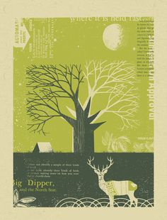 Let's Go Camping Hand-Printed Poster. $30.00, via Etsy.