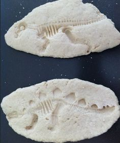 Dinosaur fossils from the post 10 Dinosaur Party Must-Haves: Boy Birthday Ideas - www.spaceshipsandlaserbeams.com
