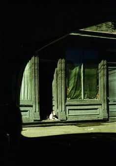 Saul Leiter (I know this is  a dog in a doorway but I like it in this Board anyway!)