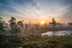 Mist on Kermeri bog on the Latvian coast