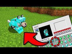 Minecraft Dogs, How To Play Minecraft, Minecraft Houses, Dog Armor, Godzilla Figures, Minecraft House Designs, Farm Projects, Boy Gif, Pocket Edition