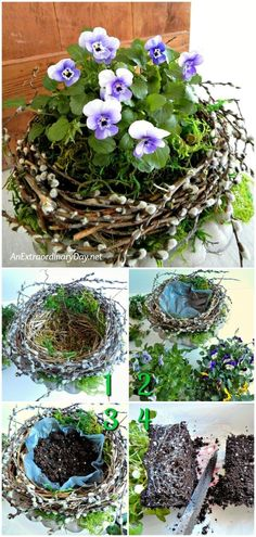 Natural Home Decor for Spring. See this Planting Tutorial for a Bird& Nest . Natural Home Decor for Spring. See this Planting Tutorial for a Bird& Nest Pansy Container for a floral vignette Garden Crafts, Garden Projects, Garden Art, Garden Design, Garden Ideas, Container Flowers, Container Plants, Container Gardening, Flower Gardening