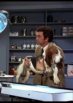 Basset Puppies, Bloodhound Dogs, Basset Hound Dog, Dogs And Puppies, Doggies, Columbo Peter Falk, Hounds Of Love, Hogans Heroes, Dog Rules