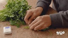 Don't let leftover herbs go to waste! Tie them into neat bundles using dental floss and hang them to dry. When the leaves feel completely dry to the touch (about ten days), they are ready to use.See the full video here.