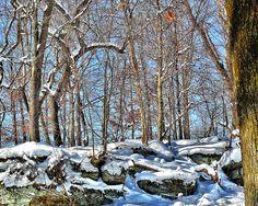 Mercer County, PA Mercer County, Snow, Nature, Travel, Outdoor, Outdoors, Naturaleza, Viajes, Destinations