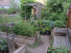 Image result for raised bed design with arbor #vegetablegardendesign