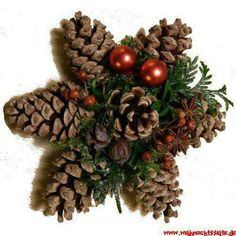 Billedresultat for weihnachten tuerdekorationTang Star Mehr Source byZapfenstern Mehr Rustic tree topper idea (try for a five pointed star)Pine cones / pinecones craft ~ a Christmas star holiday diy decorThis would be an easy Christmas star to make w Christmas Pine Cones, Rustic Christmas, Simple Christmas, Christmas Time, Christmas Wreaths, Christmas Ornaments, Pinecone Ornaments, Diy Ornaments, Christmas Door