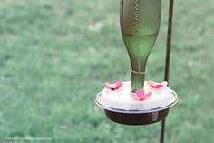 DIY hummingbird feeder from recycled materials!