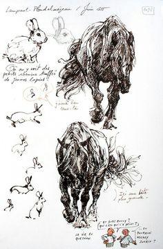 Une Bretagne par les contours / Lampaul-Ploudalmézeau Plus Festival Interceltique, Contour, Artist Sketchbook, Sketchbook Ideas, Interesting Animals, Urban Sketchers, Nature Journal, Art Journal Inspiration, Horse Art