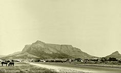 Cape Town Travel blog, get the insider scoop