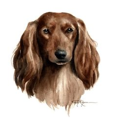 LONG HAIRED DACHSHUND Dog Watercolor Painting Art by k9artgallery, $12.50